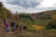 jeunes mariés 2017 Ingersheim (9)
